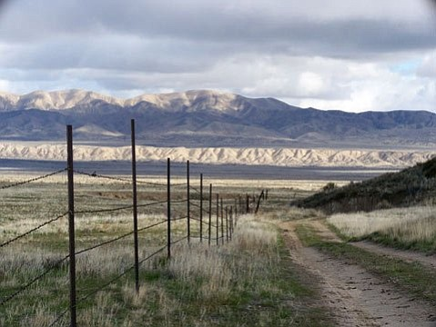 Barbed wire on the Carrizo Plain is reportedly disrupting the natural movement of Pronghorn Antelope.