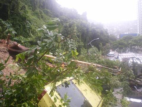 A mudslide carried a house down with it, in the neighborhood of São Conrado, crushing a number of cars parked on the street below.