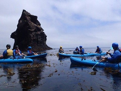 FRIENDLY FLOTILLA: With only a few guests per knowledgeable guide, it's easy to learn about Channel Island wildlife and history