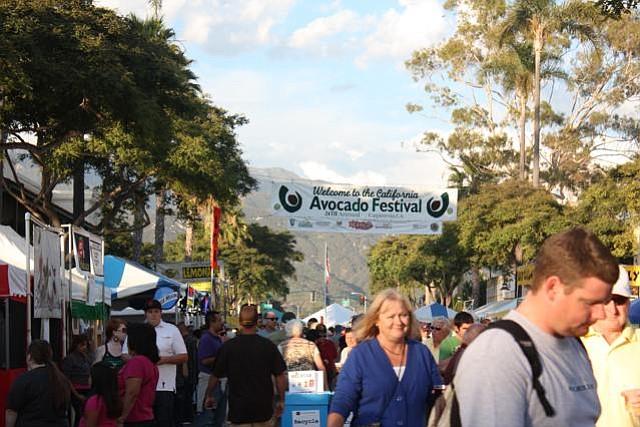 AvoFest 2010