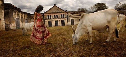 """La Torera"" by Tom Chambers."