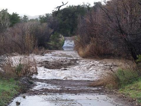 The Santa Ynez River in the Pendola Area is still at a relatively high flow.