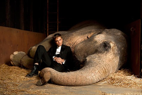 <em>Water for Elephants</em>