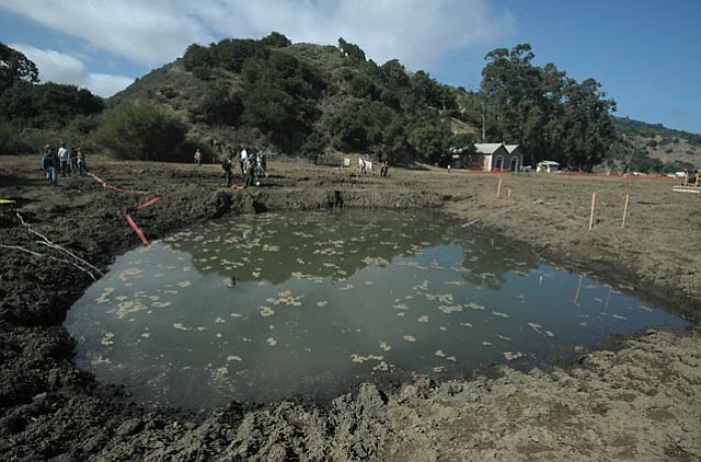 Channel Islands' Coastal Wetland Restoration Project at Prisoner's Harbor on Santa Cruz Island