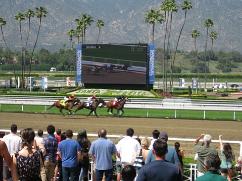 John Zant traveled south to the famed Great Place to Race in Arcadia to catch the equine action before the track closed until the fall.