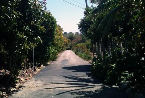 Road to San Jose Winery