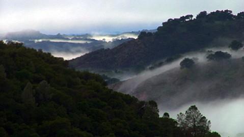 <em>The Santa Ynez River Wilderness</em>