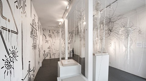 Nathan Hayden's current installation involves hanging textile-and-wire sculptures, wall drawings, and the artist boogeying in the gallery.