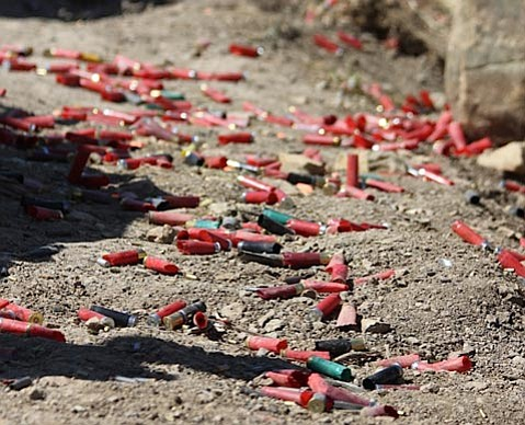 <b>THE NEW NORM?</b>  Though California is the first state in the country to ban lead ammunition, other states are considering their own restrictions.