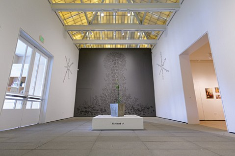 """<b>TOTEM AND TABOO:</b> The large drawing """"Medusa's Scarecrow"""" rises behind a vessel containing a poison oak plant in this installation view of the Eric Beltz exhibit The Cave of Treasures at UCSB's AD&A Museum."""