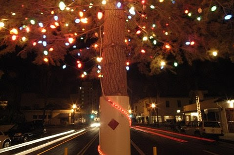 Consumer Fire Products. Inc. will pay for the transportation of the annual State Street Christmas tree this year.