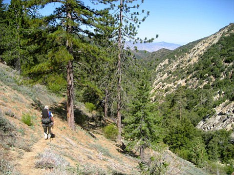 <b>UNTRAMMELED EXPERIENCE:</b>  A backpacker walks through the Los Padres National Forest's Sespe Wilderness.