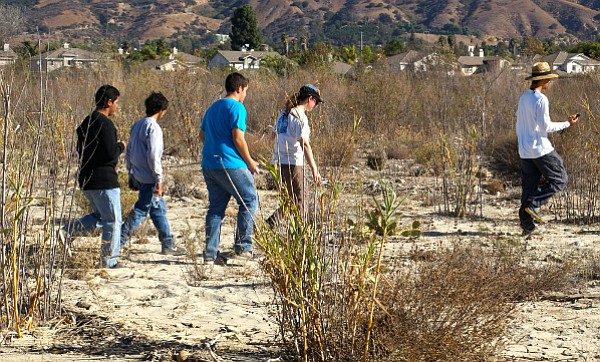Adam Lambert leads a group of students charting invasive plant removal and native plant restoration areas in the Santa Clara riverbed.