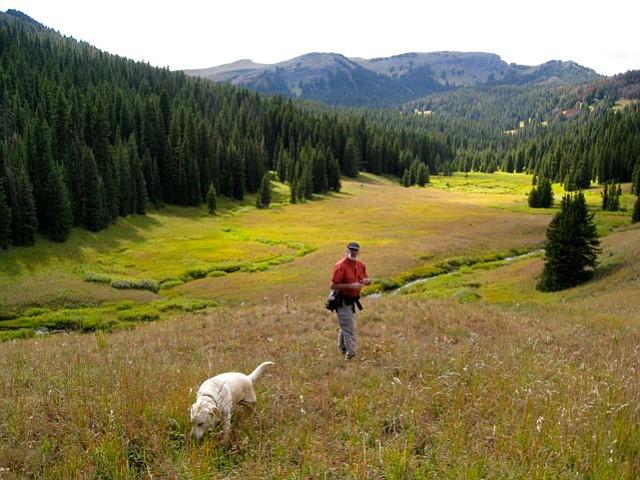 Robert Stone in the field