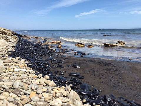 Oil collects along the coastline just north of Refugio State Beach