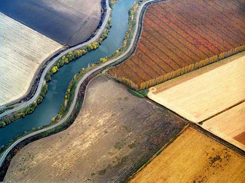 "Bill Dewey's  ""Sacramento Delta Patterns"" at <i>Vital Westmont</i>."