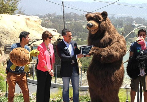 Tiny, the zoo's new 8-foot-tall grizzly bear puppet, officially accepts the AZA re-accreditation.