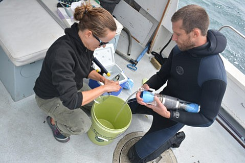 Penny Owens and Ben Pitterle of Santa Barbara Channelkeeper collect ocean water samples to calibrate a device that monitors pH levels.