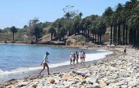 <b>OPEN SEASON:  </b>Last Thursday, a cleaned and scrubbed Refugio State Beach was reopened to the public, two months after the oil spill.