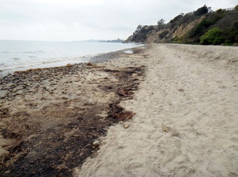 Beginning immediately, Summerland Beach is closed to the public to prevent adverse health effects and protect the public's health.