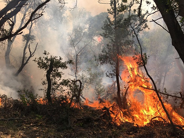 Backfires are lit in Refugio Canyon to burn up fuel.