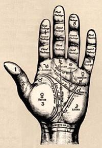 Palm diagram