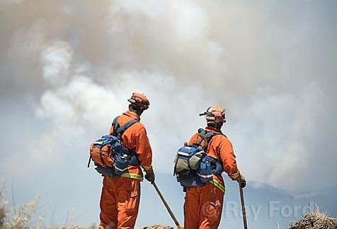 Zaca Fire