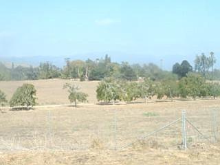 Bishop Ranch as seen from Glen Annie.