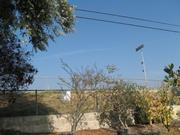 Dos Pueblos High's light towers are visible from Margaret Connell's backyard.