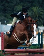 Talia Klein won numerous awards for her success in equestrian competitions.