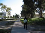 Proposed site for mixed housing on UCSB's Ocean Road.