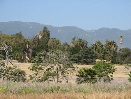 The Bishop Ranch from Cathedral Oaks Road