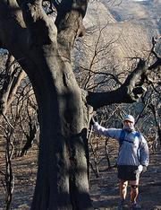 The author among the Live Oak skeletons, near Happy Hollow.