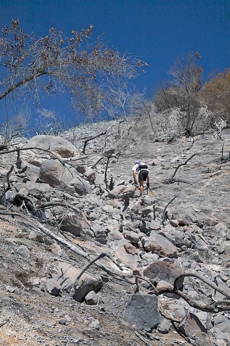 Ron Noe climbs up a steep section of burn area that could have serious erosion issues this winter.