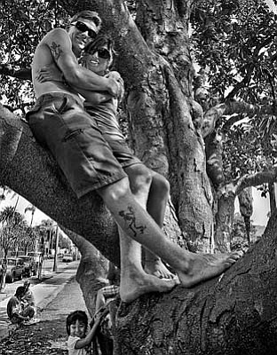 """Treehuggers"""