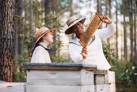 <em>The Secret Life of Bees</em> has Queen Latifah (right) playing adoptive family to Dakota Fanning in 1960s South Carolina.
