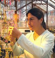 Dr. Susan J. Mazer