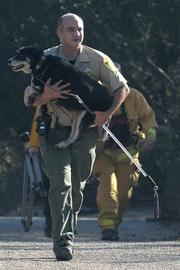 John Perry from Santa Barbara County Animal Services carries Quincy back to safety from the dog's Mountain Drive home.