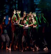 "Students from the UCSB Dance Company joined SBDT dancers in Jerry Pearson's ""Life Cycle of Trees."""