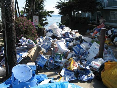 Floatopia 2009 proved to be an environmental disaster.