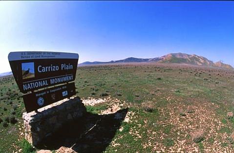 The Carrizo Plain