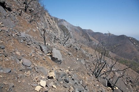 Tunnel Connector Trail has no vegetation left along it at all and this fork of Rattlesnake Canyon is completely burned to mineral soil.