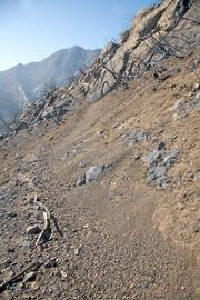 Section of Tunnel Trail shows how quickly the fire damage has impacted the trail. Ninety-five per cent of the trail looks like this or worse.