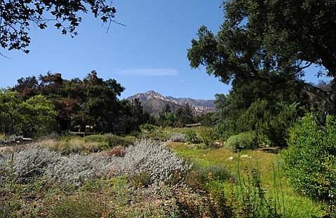 Santa Barbara Botanic Garden