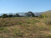 Rezoned Hollister site north of Cortona Drive.