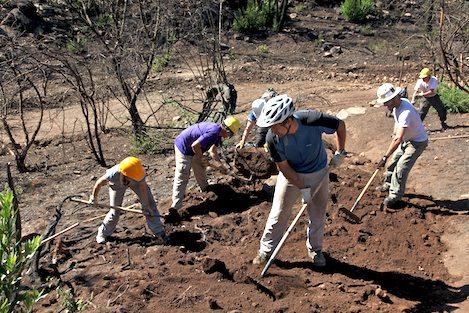 soil erosion control techniques pdf