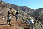 Further up trail, other volunteers finish another type of water control feature known as a nick.