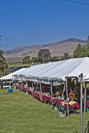 The bucolic setting at Rancho Sisquoc Winery.