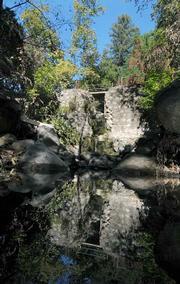 Botanic Garden Bridge