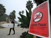 Warning signs posted at Arroyo Burro Beach didn't stop a handful of surfers from taking advantage of the waves